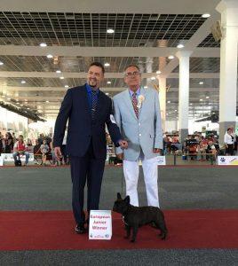 euro-dog-show
